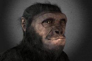 EWnigmas del universo:sahelanthropus
